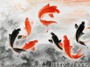 生活在唐朝的鲤鱼最幸福,贩卖和食用鲤鱼那可是犯法的!